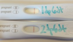 Two Week Wait | Impatiently Infertile