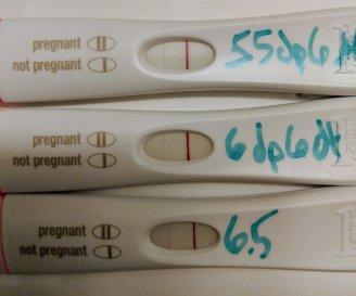 November | 2017 | Impatiently Infertile